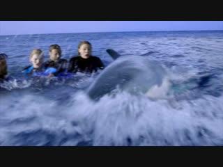 Открытое море: Новые жертвы / The Reef (2010) Трейлер от группы МозгфильМ