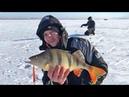 Рыбалка в Казахстане Ловля судака и окуня на озере Ащиколь на раттлины и вибы