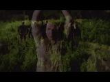 «Американская история ужасов»: Тизер №7 (сезон 3) / Официальная страница http://vk.com/kinopoisk