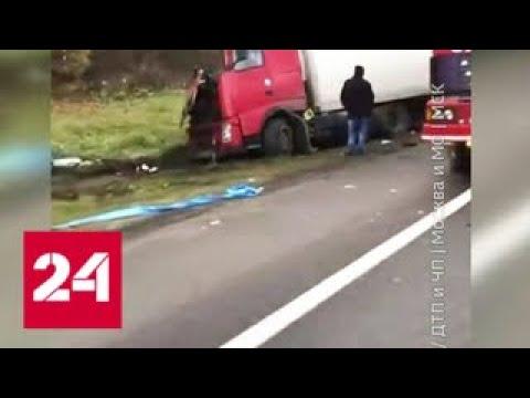На Ярославском шоссе в Подмосковье произошла авария с тремя фурами Россия 24