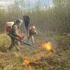 Пожарная кампания в Журавлиной родине