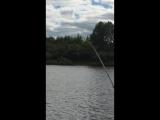 ZEMEX Rampage River Feeder 3,9 м. до 150 грамм
