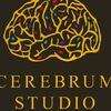 Оформление Витрин Магазинов. Cerebrum Studio