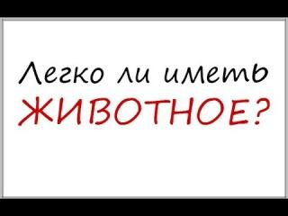 moya-uzhasnaya-istoriya-yutub