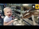 Kids you never see before - Mo Omara - funny moment kids funny movlogs 100k subscribe