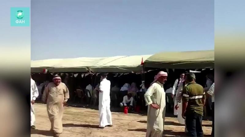 Сирия: старейшины арабских племен заявили о поддержке САА