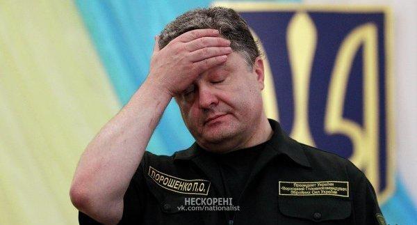 """""""Антонов"""" передал Нацгвардии патрульный самолет Ан-72П - Цензор.НЕТ 5141"""