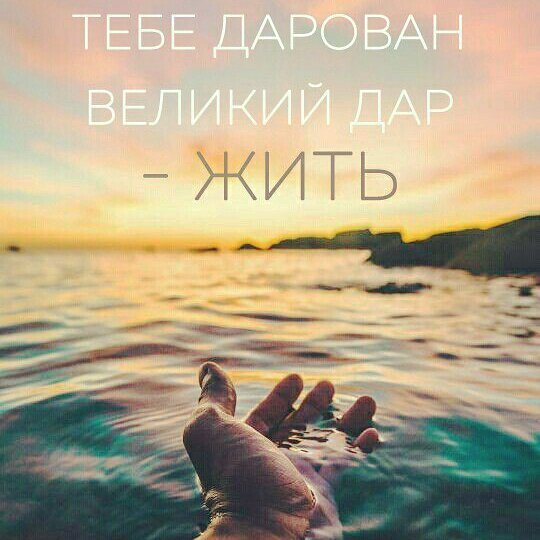https://pp.userapi.com/c639817/v639817915/4f86d/F_YBeRRekvo.jpg