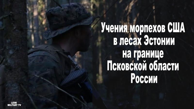 Лесные братья 2 обучение Морпехов США в лесах Эстонии