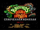 🎮 Console Guyz™️ battletoads double dragon обзор