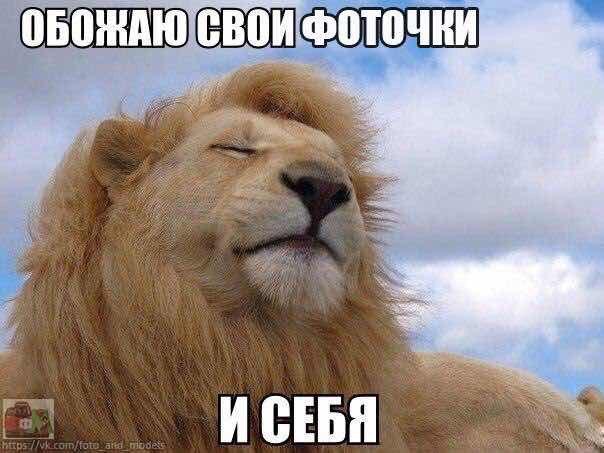 Альбина Корниенко | Ростов-на-Дону