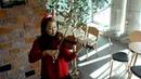 Jingle Bell violin solo