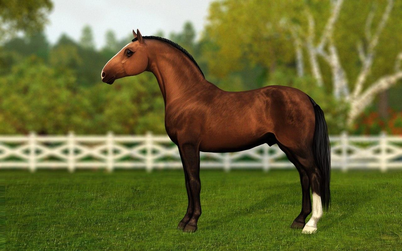 Регистрация лошадей в RHF 1.1 - Страница 37 B8a9LnsTZnk