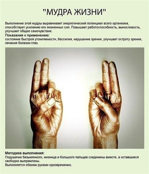 Мудры — йога для пальцев. (10 фото) - картинка