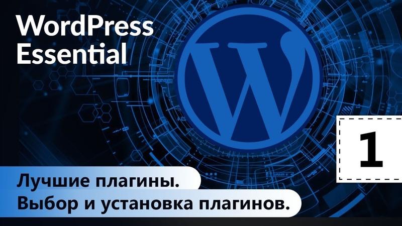 Лучшие плагины. Выбор и установка плагинов. WordPress. Базовый курс. Урок 1.