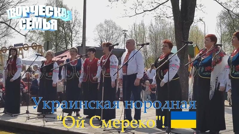 Немного живой музыки Ой Смереко Украинская нородная песня