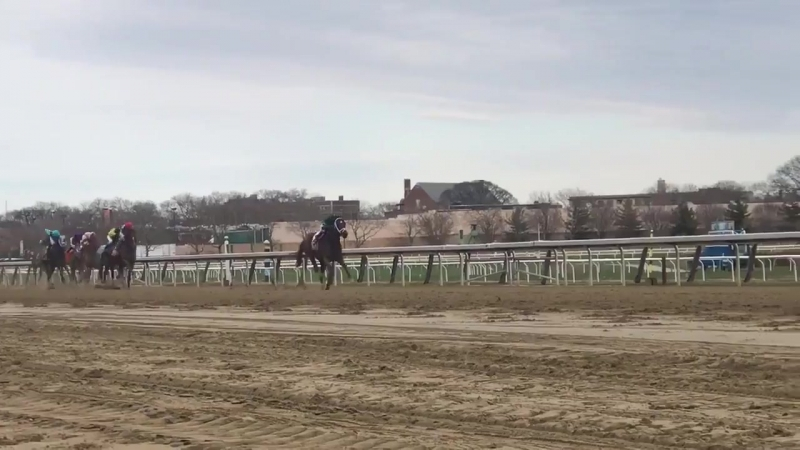 ARMY MULE romps in the G1 Carter Handicap