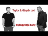 TAYLOR & GÁSPÁR LACI Gyöngyhajú Lány Radio edit