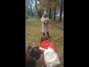 ЛайтФотошкола рф Осенняя фотосъёмка модели на пленэре