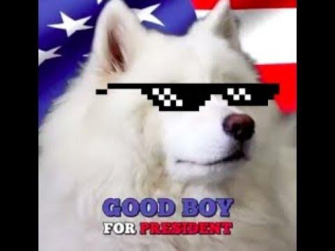 Good Boy For President ͡° ͜ʖ ͡°