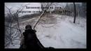 Загонная охота на лося. Закрытие сезона. Бык со 150 метров.