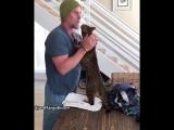 Любвеобильный кот