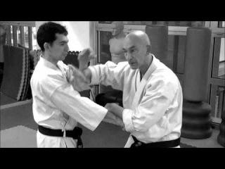 TAIRA SEMINAR TRAINIG VIDEO CLIP GEKI SAI RENZOKU BUNKAI