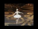 Екатерина Крысанова в балете Спящая красавица VK урокиХореографии