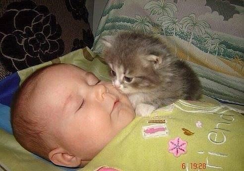 Спи ... спи, а я буду тебя - охранять!...