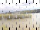 500900-Видео Разлив Иртыша
