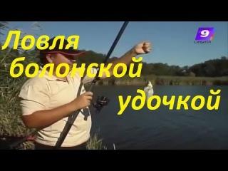 Ловля болонской поплавочной удочкой на слабом течении-Удилище,оснастка,прикормка,наживка видео