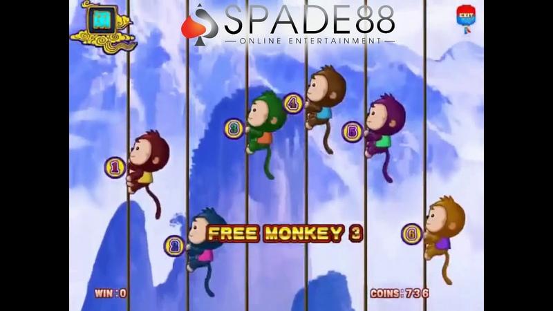 Monkey Thunderbolt PT Suite WINLION88