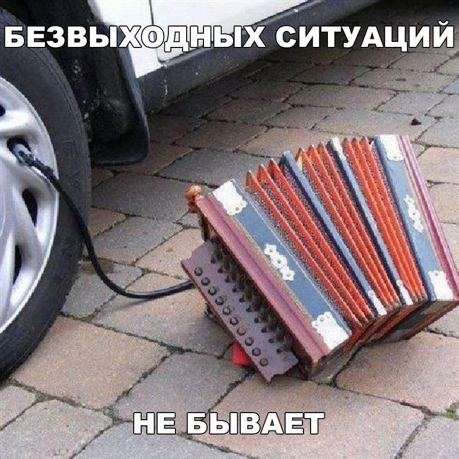 https://pp.vk.me/c7011/v7011437/4e9d5/j0C08xKPr9E.jpg