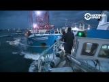 Битва на кораблях между французскими и английскими рыбаками