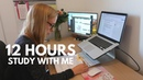 12 Hours Study Day As A Software Engineering Student