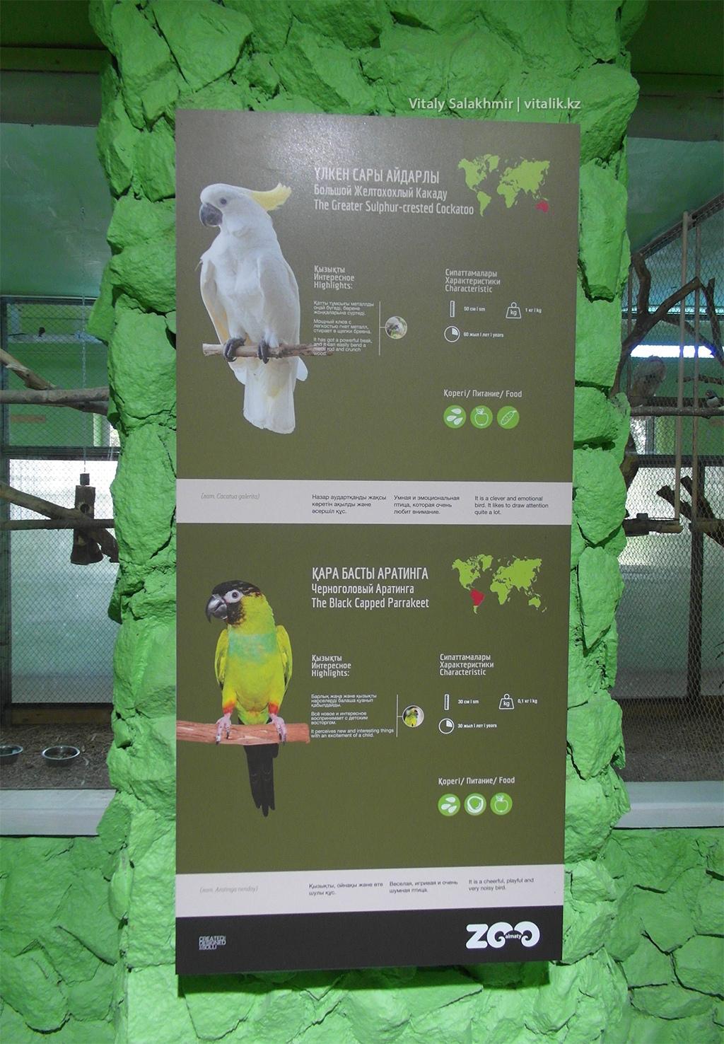 Табличка, дом птиц, Алматинский зоопарк 2018