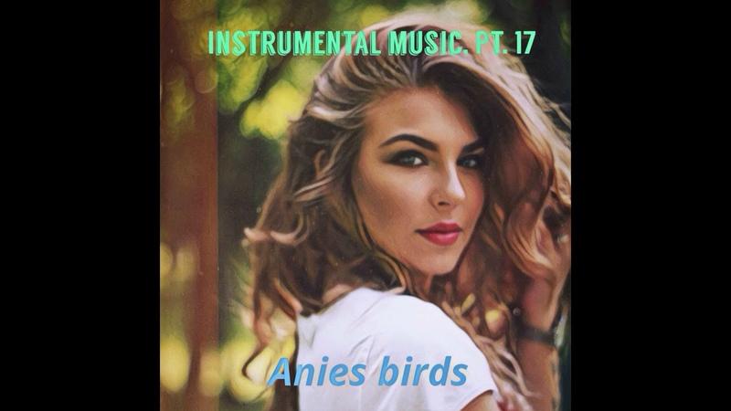 Anies birds. сборник instrumental music, pt.17