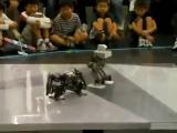 Эпичная битва роботов