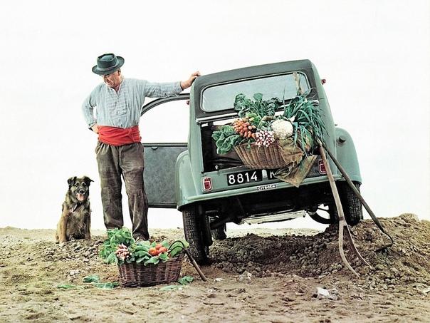История самого очаровательного Ситроена Великие автомобили прошлого рождались по разным причинам. Генри Форд, создавая знаменитую модель T, грезил мировым господством. А, скажем, Фердинанд