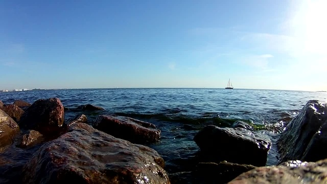 Gulf of Finland | Saint Petersburg live-coub