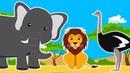 Дикие Животные Саванны Африки для Детей. Все Серии Подряд. Интересные Факты. Развивающее Видео
