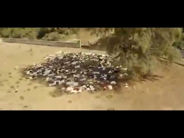 Геноцид мусульман в Бирме, просто Смотрите Прекрасные Кадры