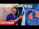 Почки и мочеполовая система причины заболеваний и самопомощь, Олег Козиков, остеопат