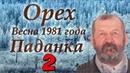 Рассказ Орех. Весна 1981 года. Паданка 2 | Писатель из Ангарска - Валентин Чемякин (Часть 2)
