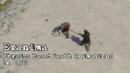 Exanima Physics Based Death Animations v 0 7 0