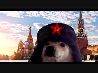 grand theft doggo
