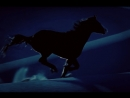 «Заклинатель лошадей»./«The Horse Whisperer»./USA.(1998).