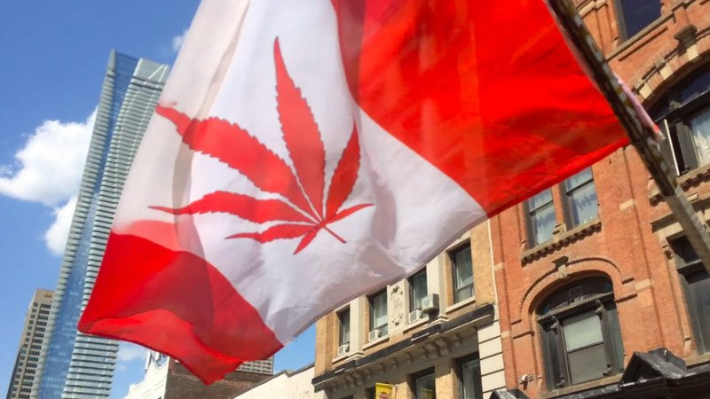 Marijuana Legalization March — Canada, Toronto: The Crowd, The Police, The Prices