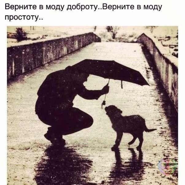 http://cs7064.vk.me/c7004/v7004937/adb6/LoheGlWbK4U.jpg