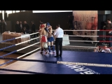 1/4 Финала. Плотников Сергей(Волгоград) vs Халитов Магомед(Москва)-51 кг